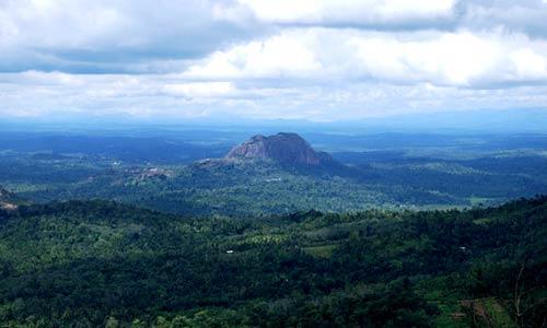 Cochin – Athirapally – Munnar