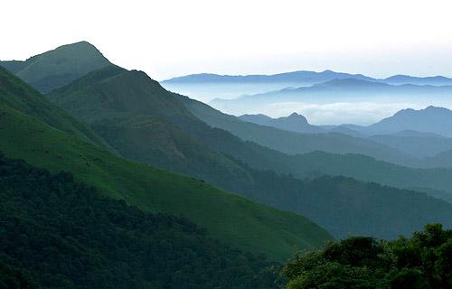 Cochin-Wayanad-Ooty